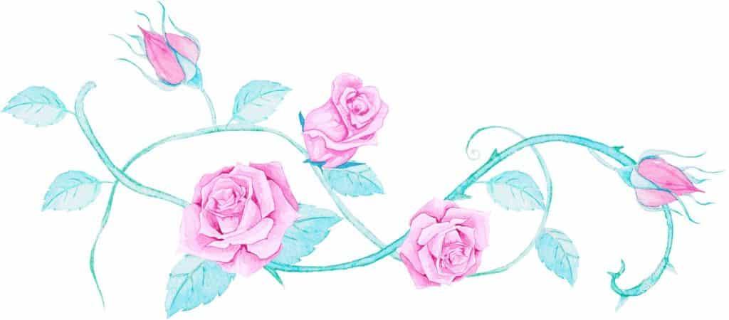 La Belle et la Bête roses crapaud-chameau.com