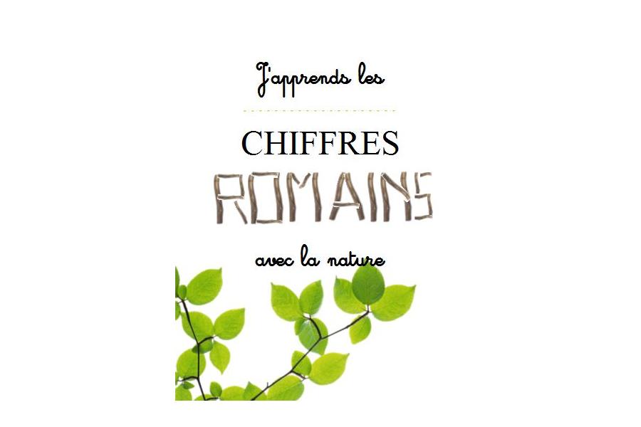J Apprends Les Chiffres Romains Avec La Nature Crapaud Chameau