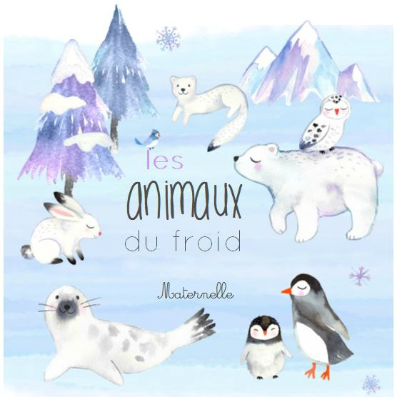 animaux froid maternelle boutique