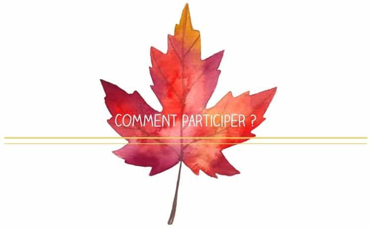 Colis Découverte du Québec crapaud-chameau.com