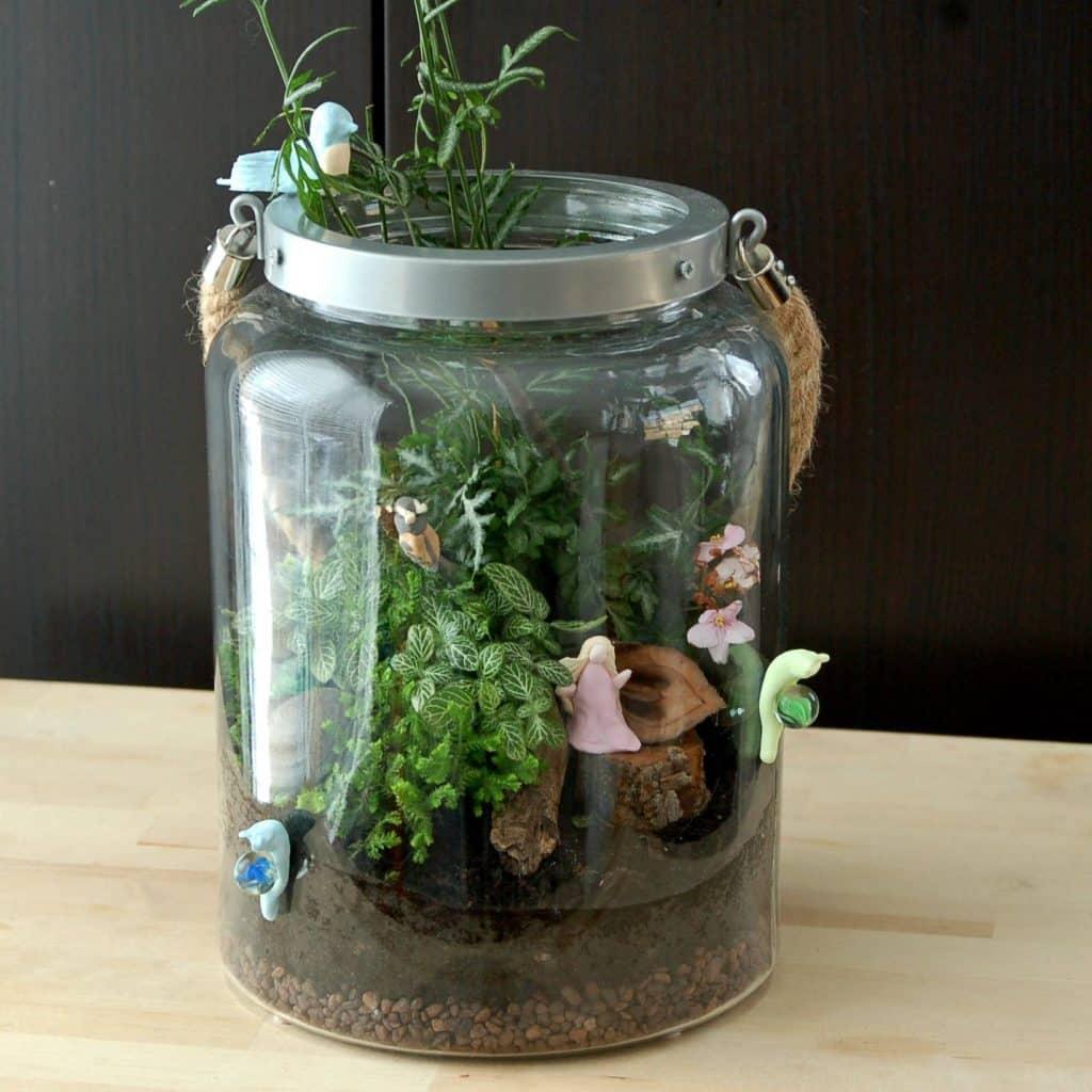 Poucette maternelle Terrarium