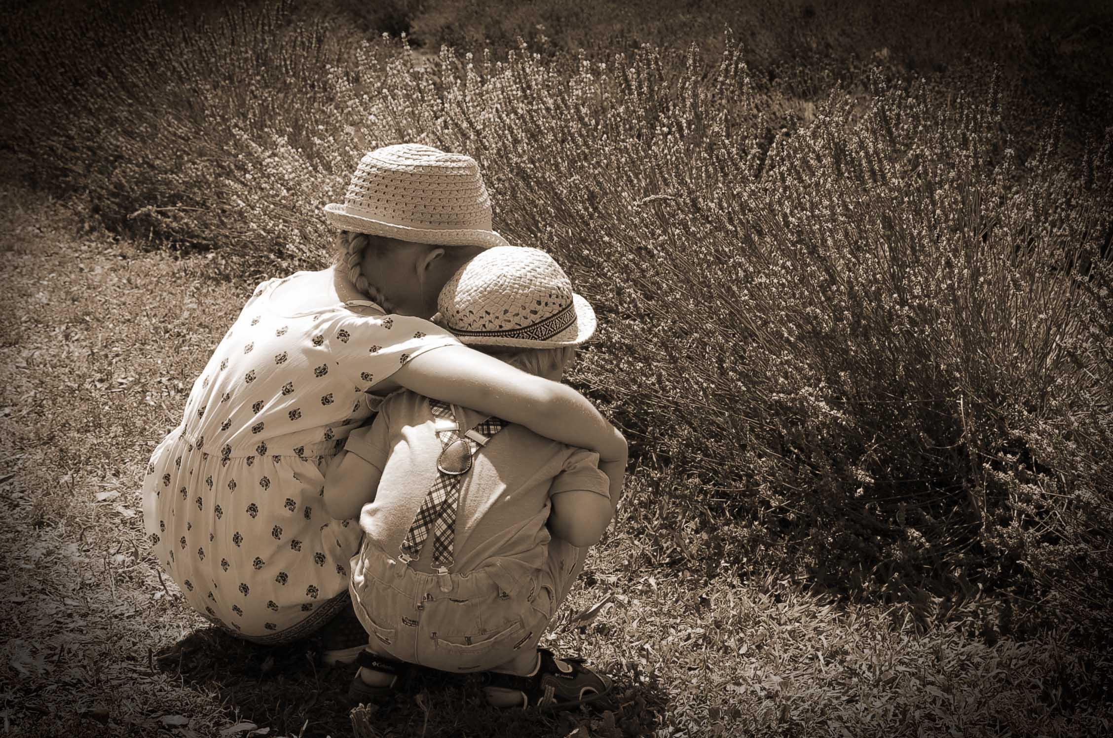 La Provence d'antan - cropyright crapaud-chameau