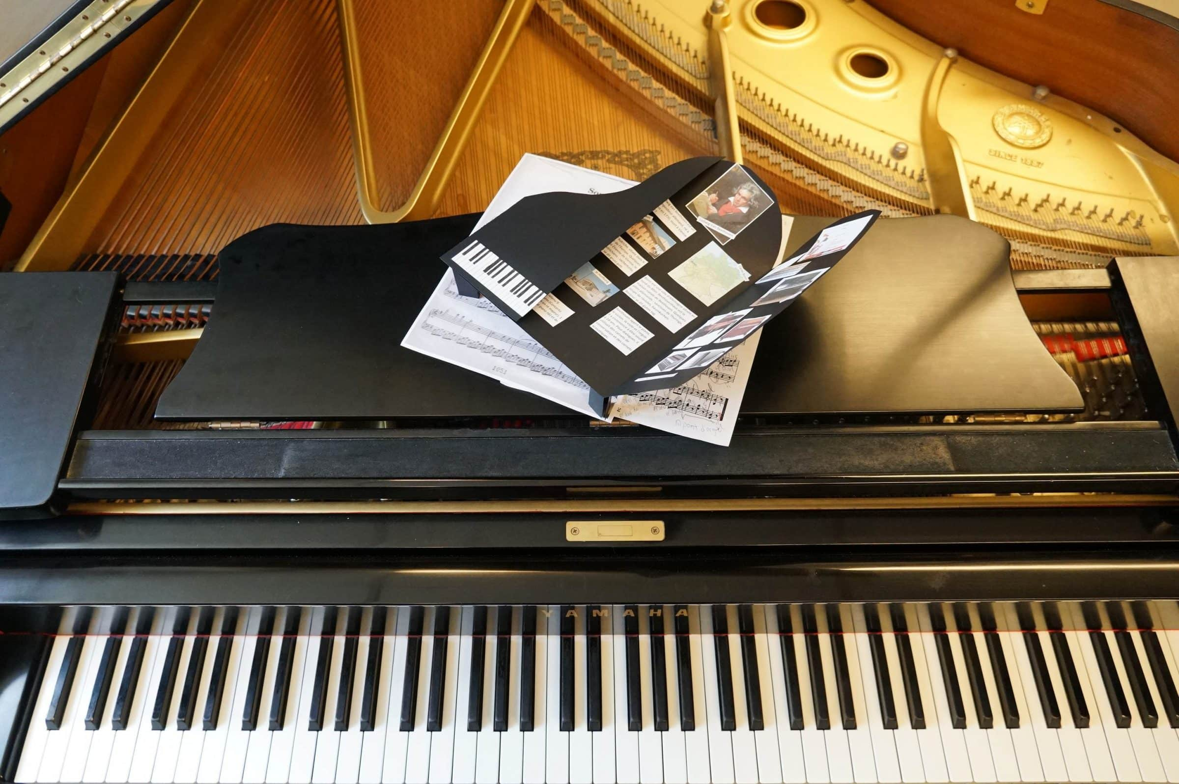 Beethoven piano lapbook