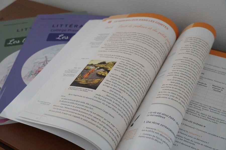 Editions Scholae Littérature copyright crapaud-chameau.com