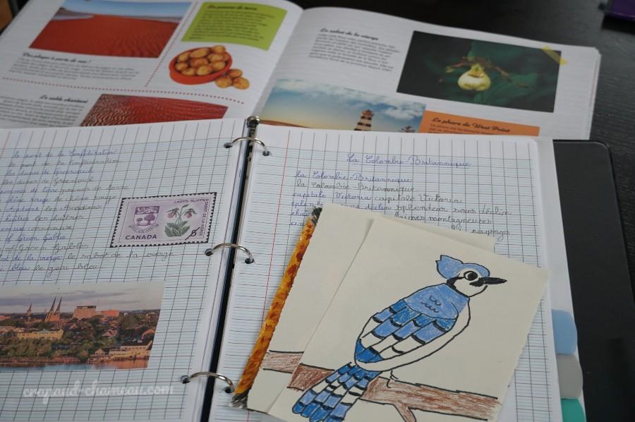 mi-année 2020-2021 CE1 3ème primaire géographie copyright crapaud-chameau.com