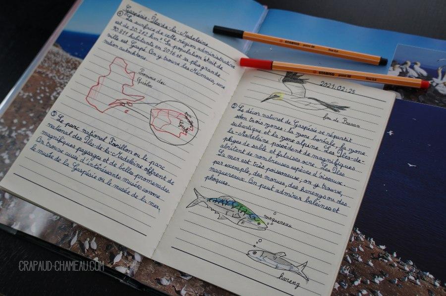 Notebooking Géographie du Québec en école à la maison copyright crapaud-chameau.com