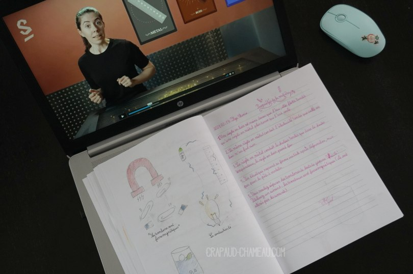 Notebooking Sciences en école à la maison copyright crapaud-chameau.com