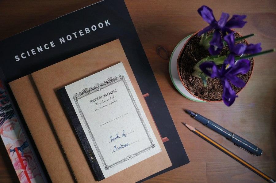 Notebooking en école à la maison copyright crapaud-chameau.com